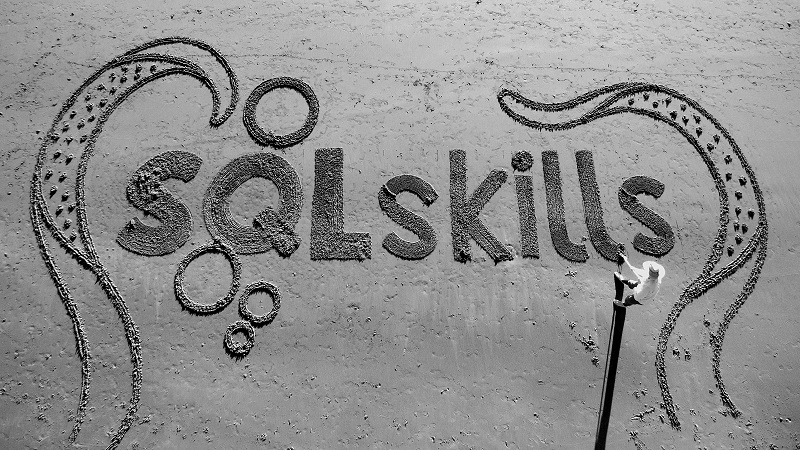 The Importance of SQL Skills For Testing Profile