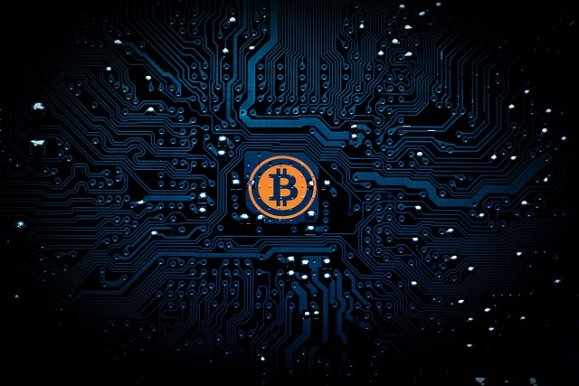 What is a Cryptocurrency Hijack and How to Avoid It With An Iolo Coupon